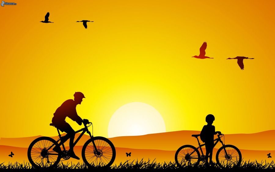 cyclists,-orange-sunset,-silhouette-162010 (1)